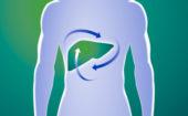 Покращення функції печінки